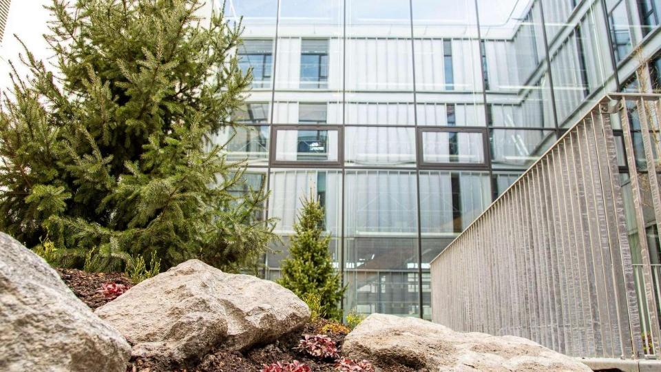 Hightech-haver skal give grønne pusterum på Hvidovre Hospital